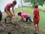 Joplin Gardening