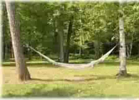 hammock1