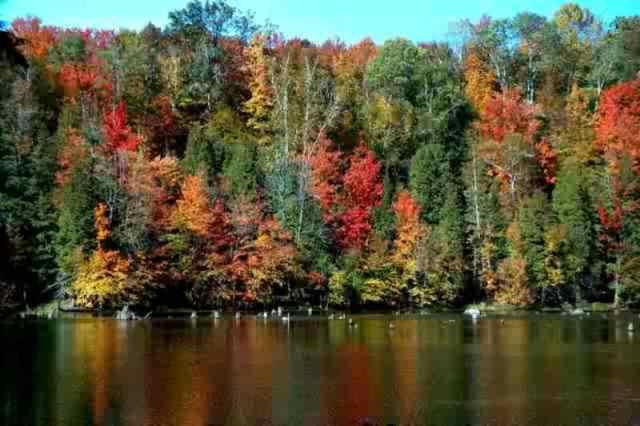 Sauble Lake 2 (1)