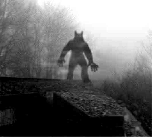 the michigan dogman first appeared in 1887 and is said to roam northwest michigan two lumberjacks initially supposedly saw him and described him as a
