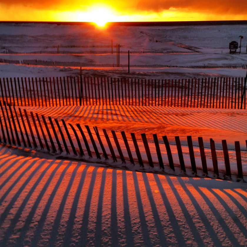 fence-in-the-sunset
